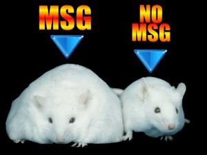 monosodium-glutamate-side-effects-300x225